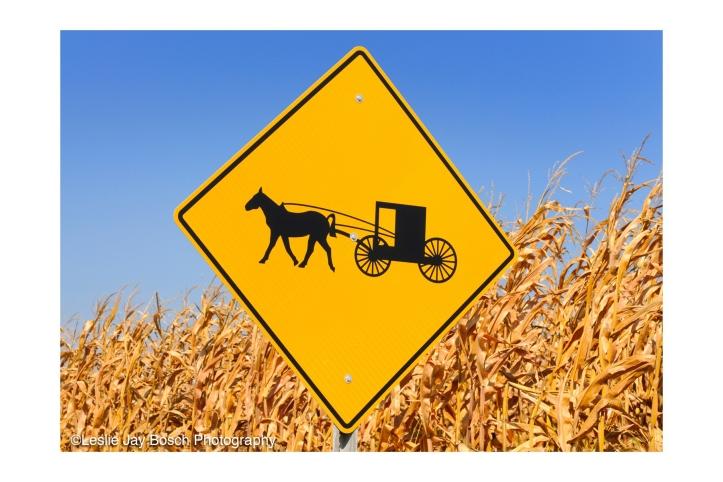 Leslie-Jay-Bosch_Amish_Road_Sign
